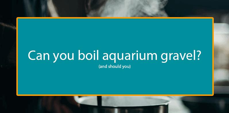 Can you boil aquarium gravel title image