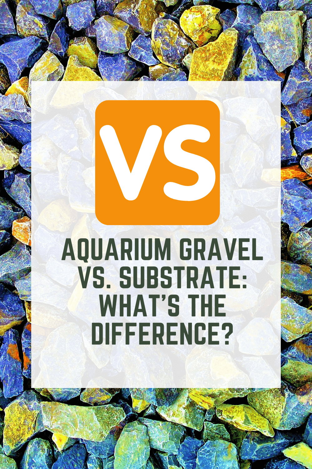 Aquarium gravel Vs. Substrate: What's the difference