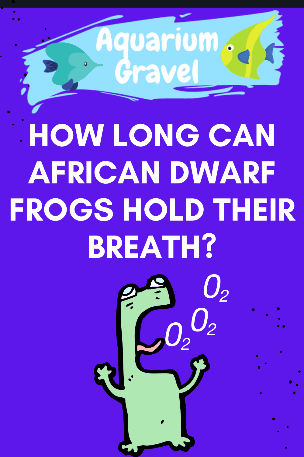How Long Can African Dwarf Frogs Hold Their Breath